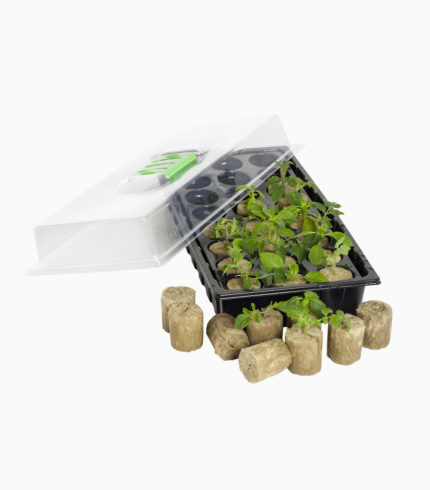 Jump Start 24-Cell Macro Plug Mini Germination Station
