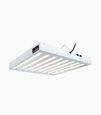 Agrobrite T5 192W 2' 8-Tube Fixture With Lamps